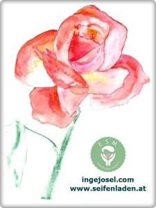 rose_gemalt1 (FILEminimizer)bearbeitet