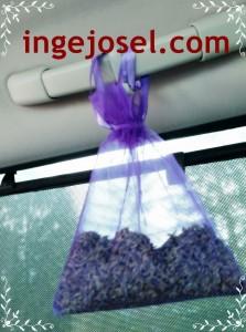 lavendel1 (FILEminimizer)