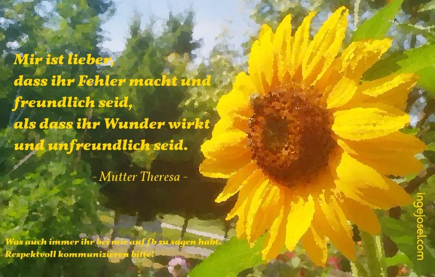 Sonnenblume In öl Einfach Selber Machen Ingejoselcom