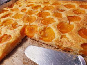 Marillenkuchen zuckerreduziert