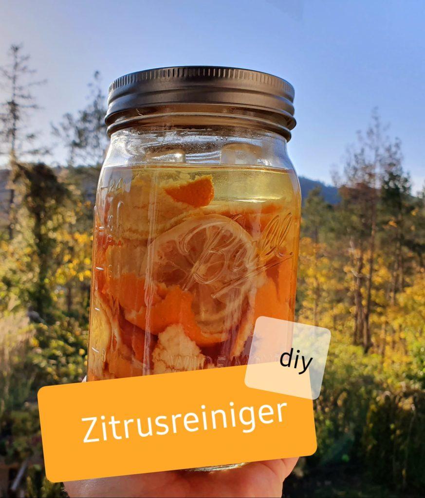 Zitrus-Essig-Reiniger im Glas